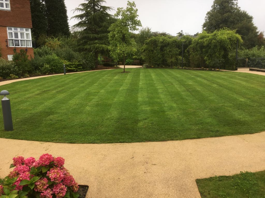 Fertilised and Mowed Care Home Lawn