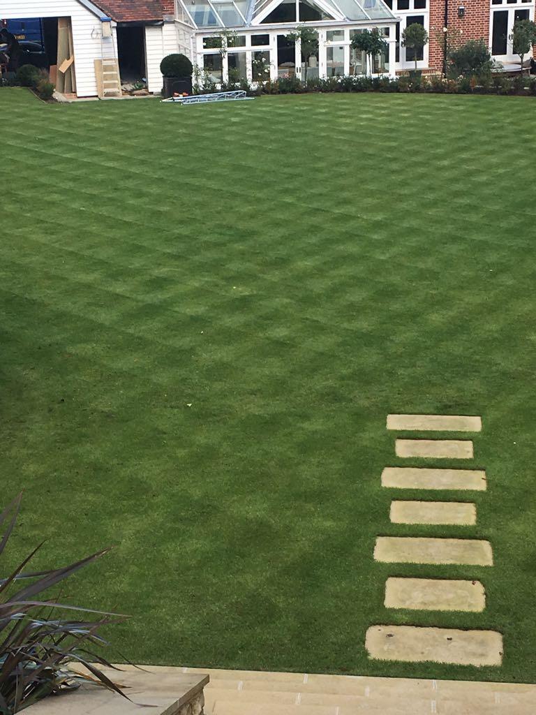 Chequered Garden Lawn Mow