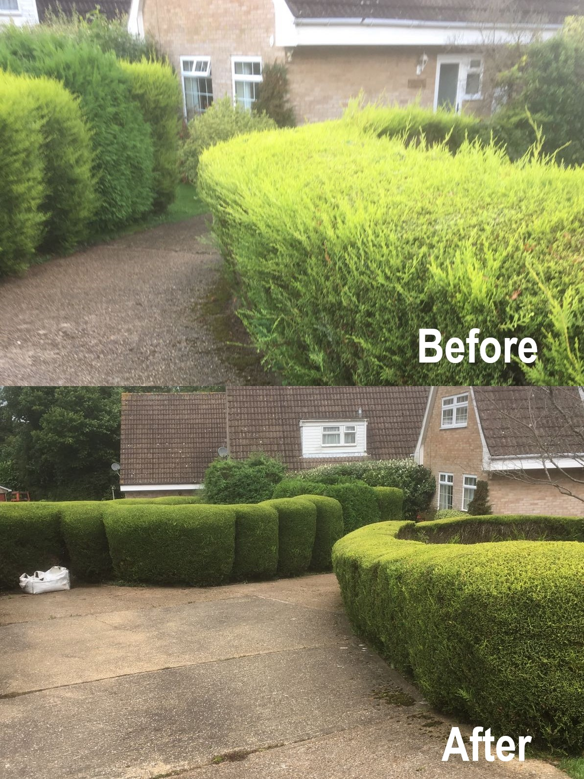Garden Hedge Cutting