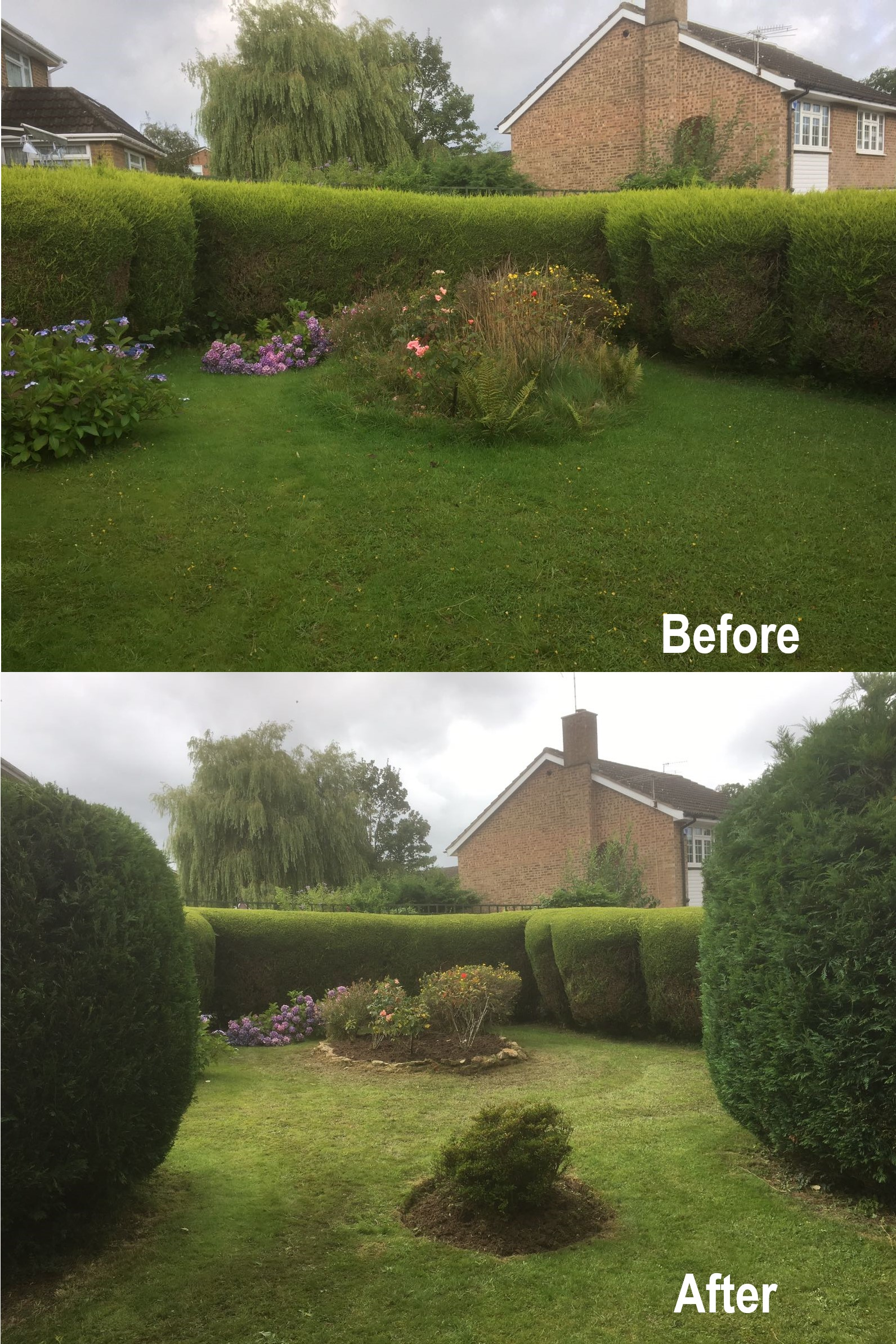 Garden Hedge Cutting and Flower Bed Maintenance
