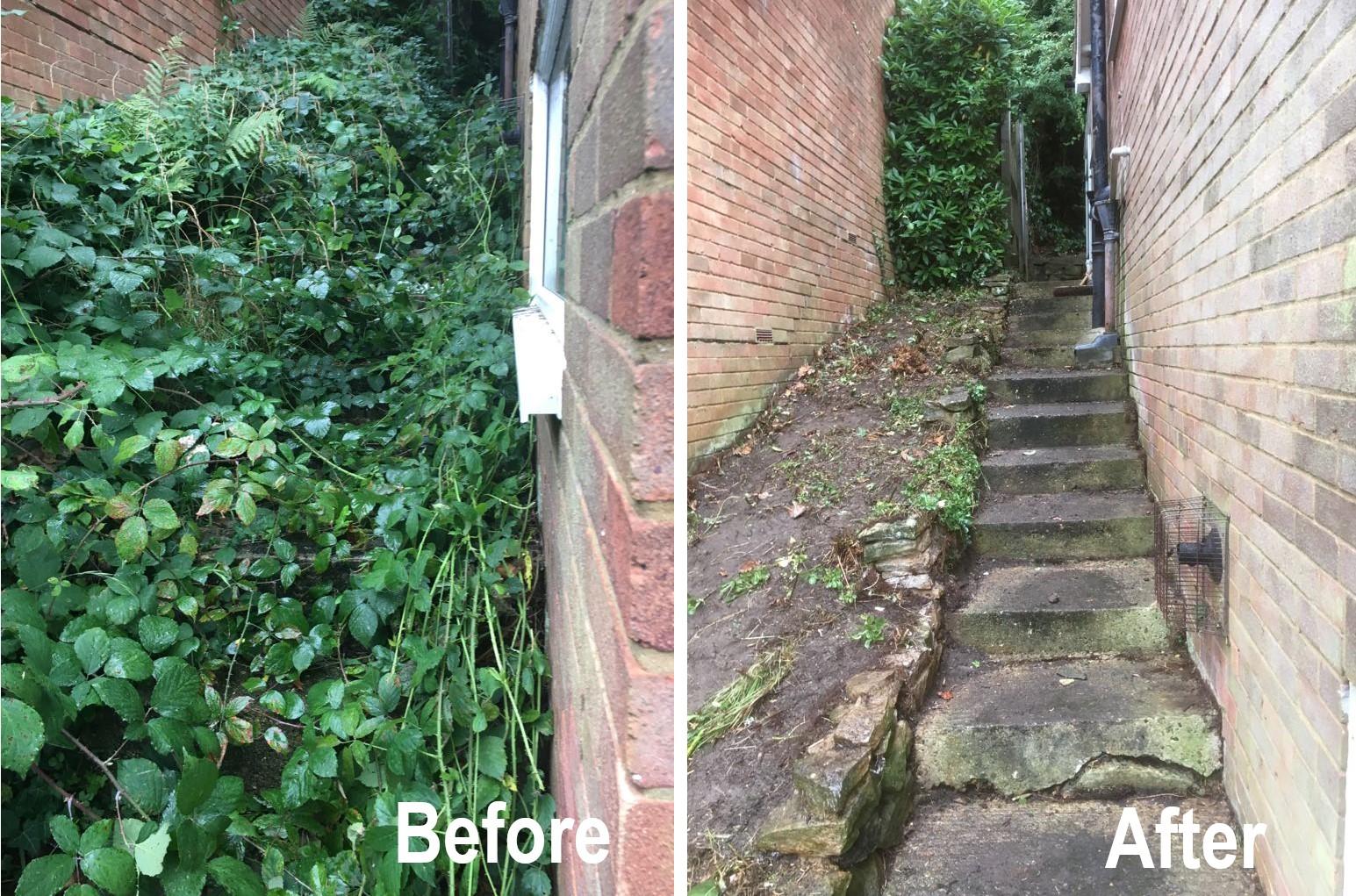 Garden Path Weeding Clearance